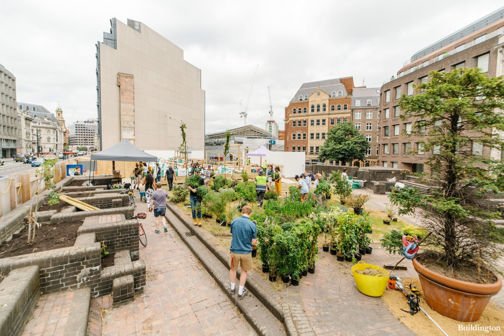 Citicape House site was launched as Gaia's Garden in Summer 2021. The community garden will be open until the development starts.
